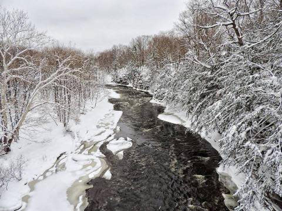 Winter in New York : Winter Festivals To Attend This Season