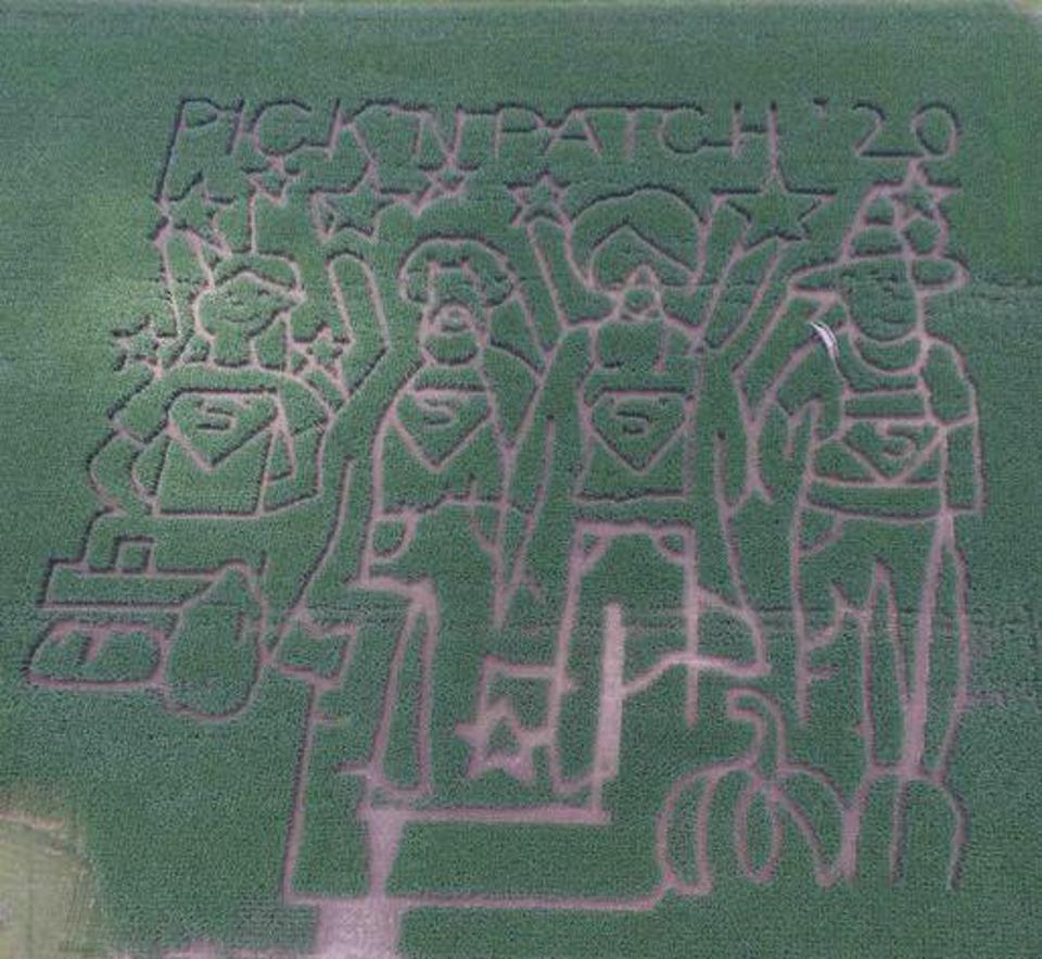 corn maze 2020