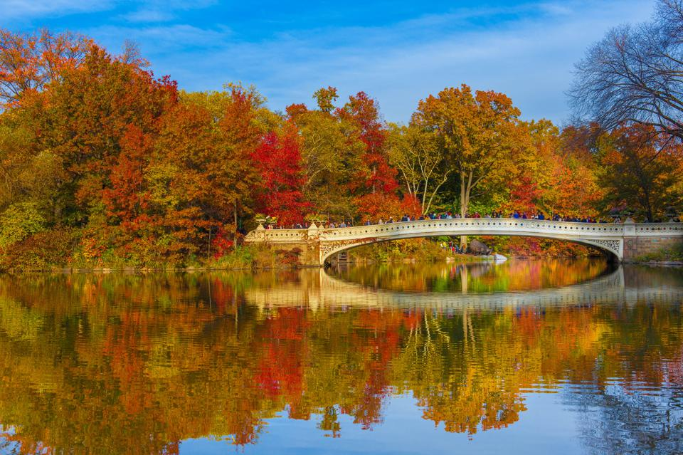 Upstate New York in the Fall